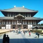 Nara JIN 03
