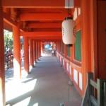 Nara JIN 05